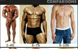 How much muscle do women find attractive?